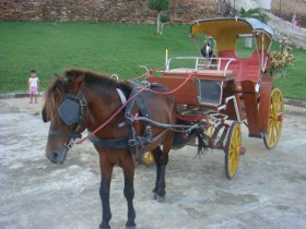 Horse & carriage in Lampang, Thailand