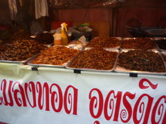 bugs for sale in Thailand