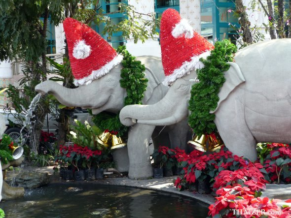 Christmas elephants in Thailand