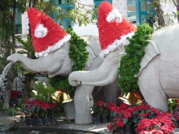 Thailand Christmas elephants