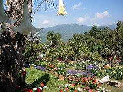 Mae Fah Luang Garden, Doi Tung, Chiang Rai, Thailand