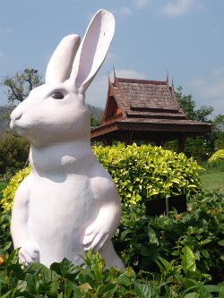 Year of the Rabbit (Chinese New Year celebrated in Thailand)