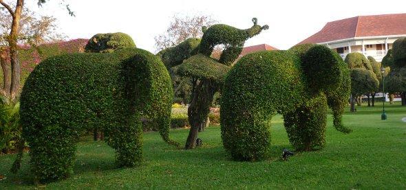 elephants in topiary garden at Sofitel Hotel, Hua Hin