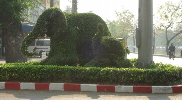 topiary elephants on traffic island in Chiang Mai