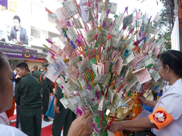 Thai money tree to make merit