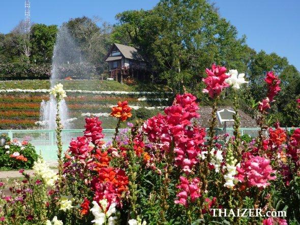 Gardens at Bhuping Palace, Chiang Mai