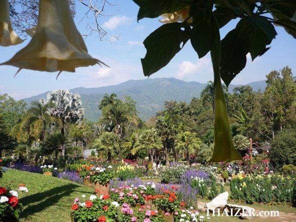 Mae Fah Luang garden, Doi Tung, Chiang Rai