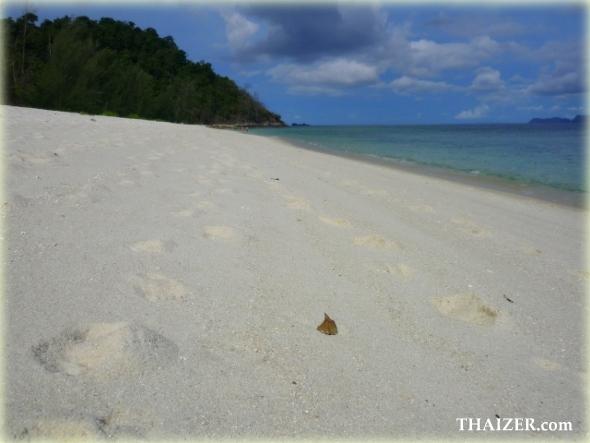 white sandy beach at Ko Adang