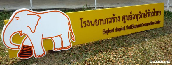 ThaiElephantConservationCentre4