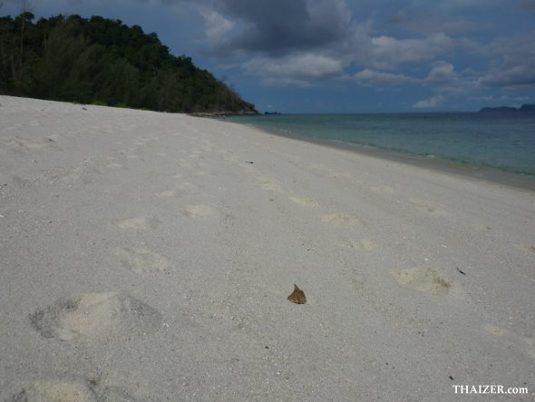 Deserted white sand beach on Ko Adang, near Ko Lipe