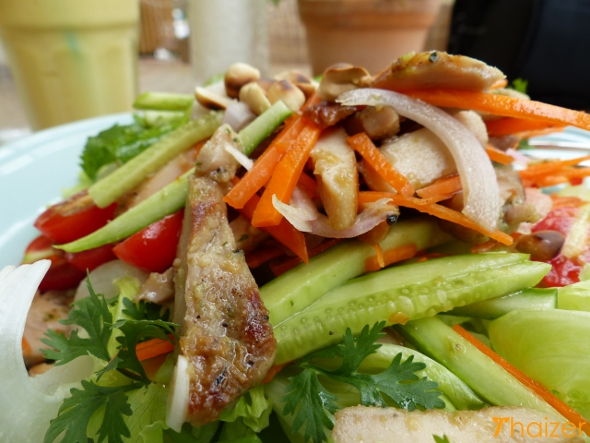 Thai yum gai salad