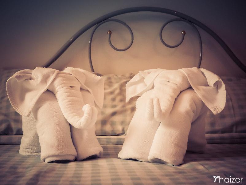 towel elephants