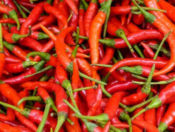Thai chillies for sale at Bangkok market