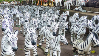 Why are There Zebras at Shrines in Thailand?