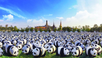 artist's impreesion of pandas at Sanam Luang, Bangkok