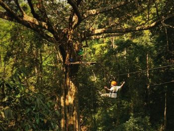 Thaizer at Flight of the Gibbon, Chiang Mai